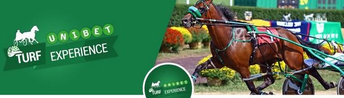Devenez propriétaire d'un cheval de course avec l'Unibet Turf Expérience